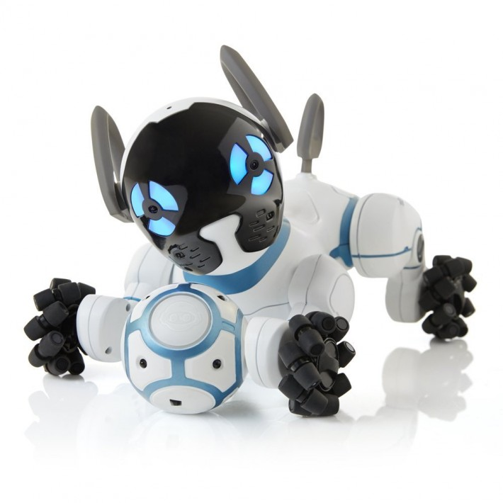 Chip Robot Dog 1